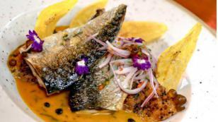 ¡Entérate aquí por qué debemos descartar los mitos en torno al consumo de pescado!