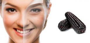 Maíz morado evita el envejecimiento de la piel