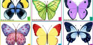 Elige una mariposa y conoce tu personalidad