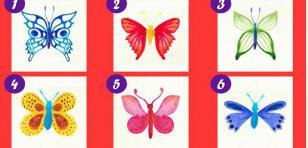Test: Elige una mariposa y descubre qué revela de tu personalidad